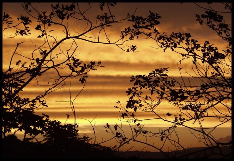 landscapes 08