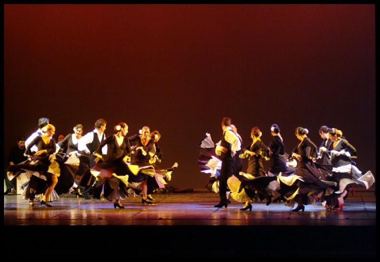 ballet & theater 13