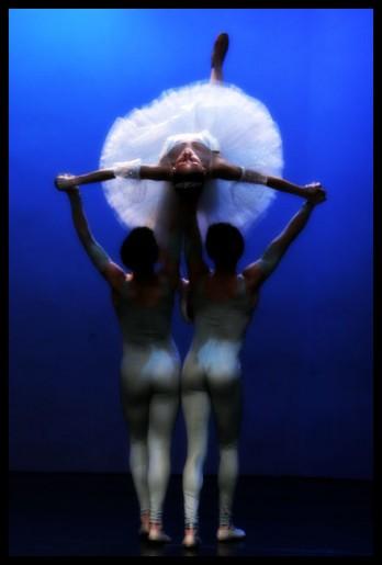 ballet & theater 25