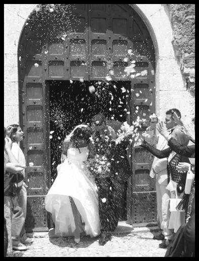 wedding  66